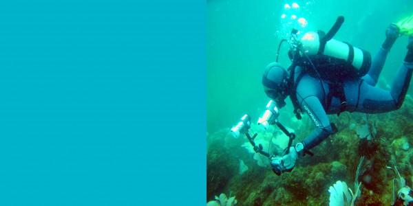 Модный цвет весна-лето 2015: Цвет морской волны