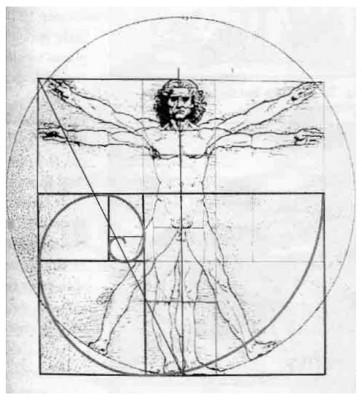 как увеличить рост визуально пропорции