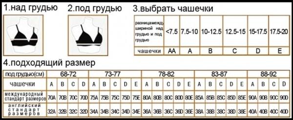таблица женских размеров белья чашечки